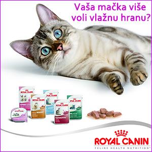 Royal Canin vlazna hrana